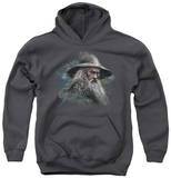 Youth Hoodie: The Hobbit - Gandalf The Grey Pullover Hoodie