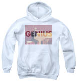 Youth Hoodie: Ray Charles - Genius Knockout Pullover Hoodie