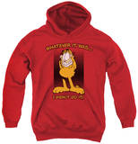 Youth Hoodie: Garfield - I Didn't Do It Pullover Hoodie