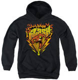 Youth Hoodie: The Flash - Blazing Speed Pullover Hoodie