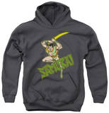 Youth Hoodie: DC Comics - Samurai Pullover Hoodie