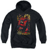 Youth Hoodie: Justice League - Nightwing 1 Pullover Hoodie