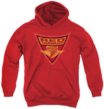 Youth Hoodie: Batman The Brave and Bold - Red Tornado Shield Pullover Hoodie