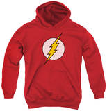 Youth Hoodie: DC Comics - Flash Logo Pullover Hoodie