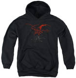 Youth Hoodie: The Hobbit - Smaug Pullover Hoodie