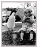 Le show du pingouin Affiches