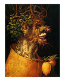 Summer, c.1563 Posters by Giuseppe Arcimboldo