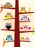 Owls Colors Poster van  danielfela