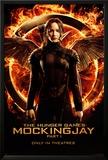 Hunger Games - Mockingjay Part 1 Katniss Prints