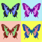 Pop Art Swallowtail (Papilio Machaon) Plakaty autor Marco Uliana