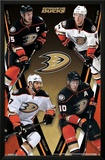 Anaheim Ducks - Group 14 Posters