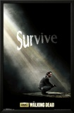 The Walking Dead - Survive Prints