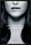 Fifty Shades Of Grey Posters