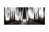 Dark, Fairytale Trails in the Forest in an Autumn Foggy Day Print by  bonciutoma