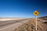 Alpaca Road Sign Fotografisk tryk af  berzina