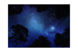 Starry Sky through Trees Posters by  kaalimies