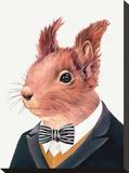 Squirrel Impressão em tela esticada por  Animal Crew