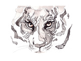 Tiger Poster by  okalinichenko