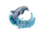 Dolphin Prints by  okalinichenko