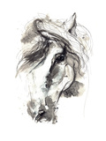 Horse Premium Giclee-trykk av  okalinichenko