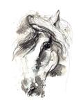 Häst Gicléetryck på högkvalitetspapper av  okalinichenko
