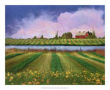 Idyllic Farm II Giclee Print by Chris Vest