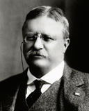 Theodore Roosevelt, 26th President of the United States Photo