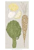 Contour Fruits & Veggies VI Prints by  Vision Studio