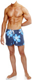 Beach Muscle Man Stand In Figuras de cartón