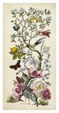 Chinoiserie Natura II Giclee Print by Naomi McCavitt