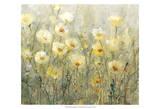 Summer in Bloom I Plakat av Tim O'toole