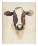 Watercolor Animal Study VII Giclee Print by Grace Popp