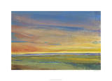 Fading Light I Premium Giclee Print by Tim