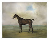 The Prince Rohan's Favorite Hunter Giclee Print by Naomi McCavitt