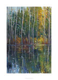 Pine Reflection II Limited Edition by Tim