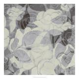 Grey Garden II Giclee Print by Grace Popp