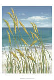 Summer Breeze I Print by Tim O'toole