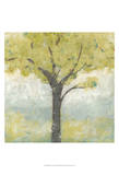 Spring Arbor I Plakat af June Erica Vess