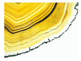 Agate Section Yellow, Urban Road Print by Marion Duschletta
