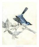 Rustic Aviary III Giclee Print by Naomi McCavitt