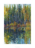 Pine Reflection I Limited Edition by Tim