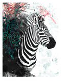 Zebra Love, Urban Road Prints
