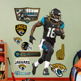 Denard Robinson Wall Decal