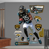 Allen Robinson Wall Decal
