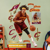 Anderson Varejao Wall Decal