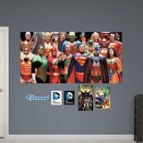 DC Comics Heroes Mural Wall Mural