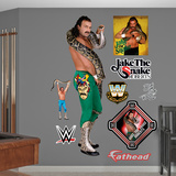 Jake the Snake Roberts Wall Decal