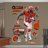 Jeremy Hill Wall Decal