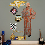 Ric Flair Wall Decal