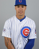 2015 Chicago Cubs Photo Day Photo by Ron Vesely